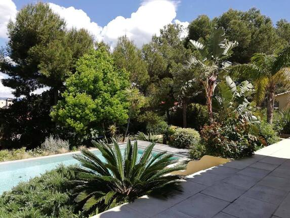 <i>Verdure en bord de piscine</i>