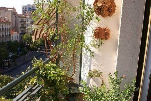 <i>Balcon après aménagement</i>
