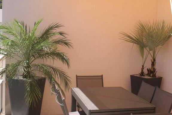 <i>Balcon et palmier</i>