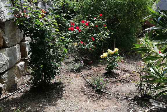 <i>Avant réalisation de jardin</i>